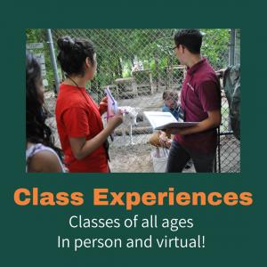 ClassExperiences
