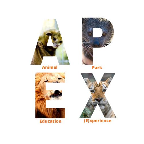 Animal Park Education