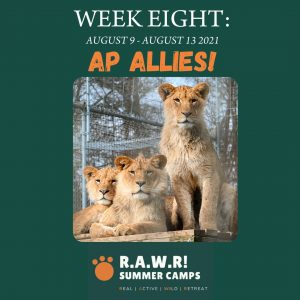 WEEK EIGHT_ AP ATHLETES!